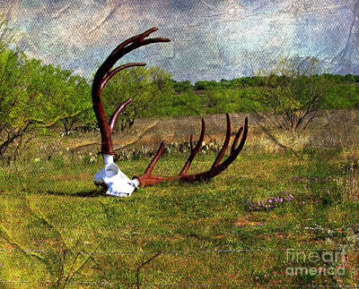 They Grow Them Big In Texas Art Print by Linda Cox