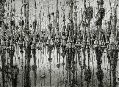 Cypress Swamp Drawing - Things Go Better With Coke by William Underwood