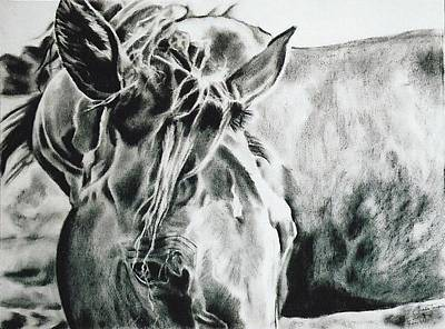 Tennessee Walker Drawing - Things Were Sweeter In Tennessee by Shaila Yovan Tenorio