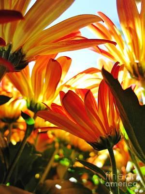 Photograph - Think Spring by Barbara Bardzik