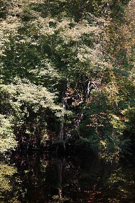 Thinking Of Autumn Reflections Art Print