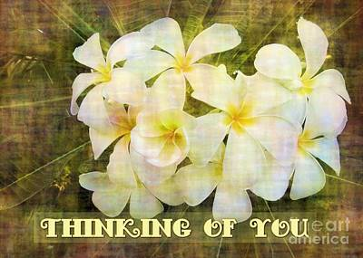 Digital Art - Thinking Of You Plumeria by JH Designs