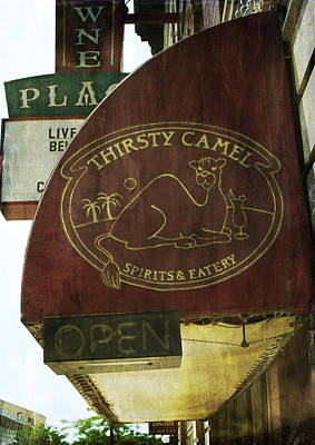 Photograph - Thirsty Camel by Michael Colgate