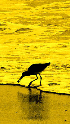 Winter Animals Rights Managed Images - This Beach Belongs To Me Royalty-Free Image by Ian  MacDonald
