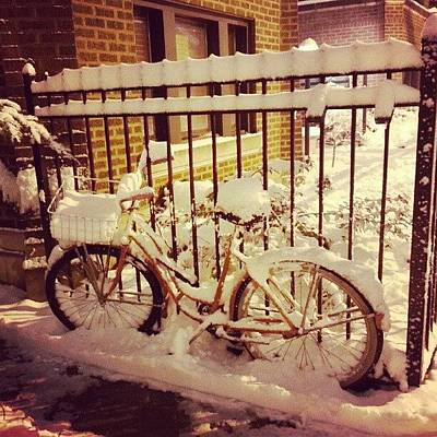 Bike Photograph - This Bike Hasn't Moved In 5 1/2 Years by Jill Tuinier