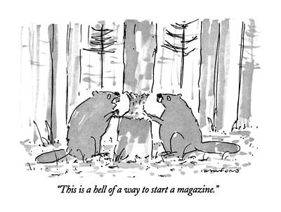 Beaver Drawing - This Is A Hell Of A Way To Start A Magazine by Michael Crawford