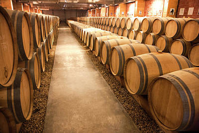 Aging Photograph - This Is A Storage Area For Wine by Mallorie Ostrowitz