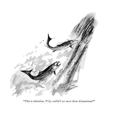 Salmon Drawing - This Is Ridiculous. Why Couldn't We Meet by Joseph Mirachi