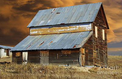 This Old Barn Original