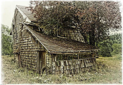 Gallery Website Photograph - This Old House by Thom Zehrfeld