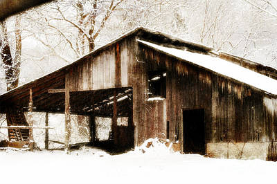 Photograph - This Old Shack by Peggy Franz