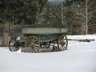 Bi-cycle Photograph - This Old Wagon by Steven Parker