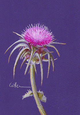 Painting - Thistle by Diane Cutter