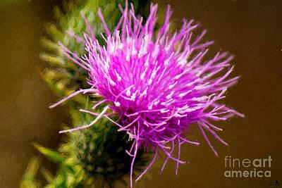 Parks - Thistle Flower by Sandra Clark
