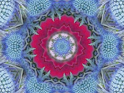 Digital Art - Thistle Portal Mandala by Diane Lynn Hix