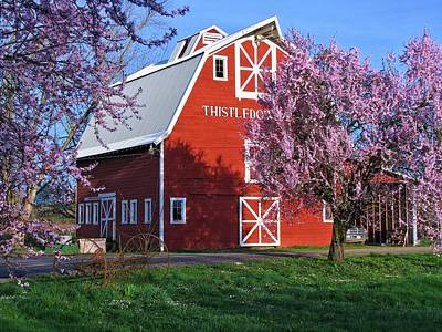 Photograph - Thistledown Farm  by Lora Fisher