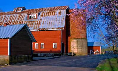 Photograph - Thistledown Farm Silo by Lora Fisher