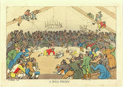 Handcolored Etching Drawing - Thomas Rowlandson, British 1756-1827, A Dog Fight by Litz Collection
