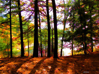 Thoreau's View Of Walden Pond Art Print by Tom Christiano