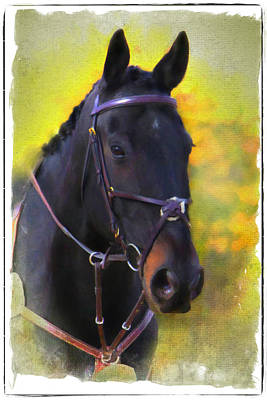 Digital Art - Thoroughbred by Posey Clements