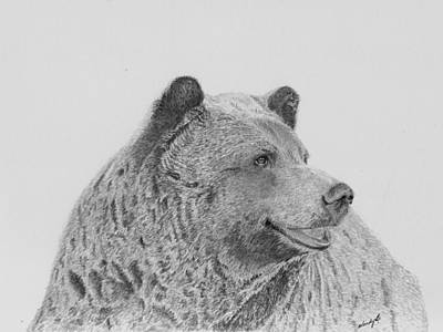 Grizzly Bears Drawing - Thoughtful Boo by Wendy Brunell
