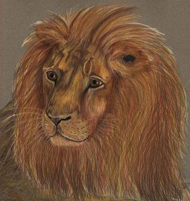 Art Print featuring the drawing Thoughtful Lion 2 by Stephanie Grant