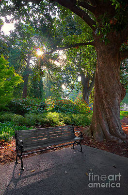 Park Benches Photograph - Thoughts For A New Day by Michael Eingle