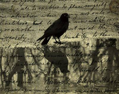 Corvidae Digital Art - Thoughts Of Poe by Gothicrow Images