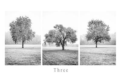 Photograph - Three by Alfio Finocchiaro