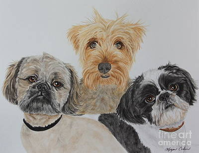 Pet Painting - Three Amigos by Megan Cohen