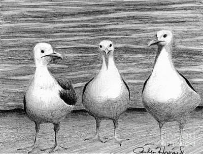 Drawing - Three Amigos by Phyllis Howard