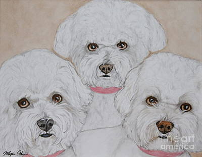 Pet Portraits Painting - Three Bichons by Megan Cohen