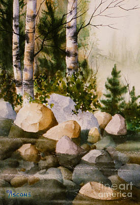 Three Birch By Rocky Stream Art Print