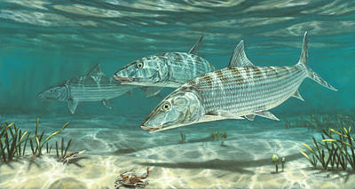 Salt Water Game Fish Painting - Three Bonefish And Crabs by Don  Ray