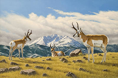 Buck Painting - Three Bucks On The Ridge by Paul Krapf