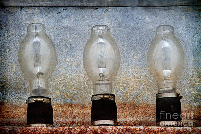 Photograph - Three Bulbs by Alice Cahill