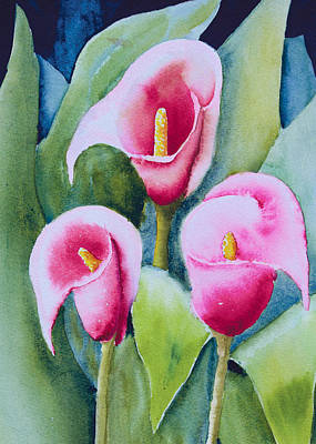 Featured Images Painting - Three Callas by Melanie Harman