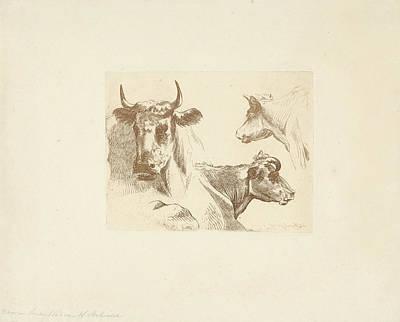 Three Cow Heads, Jean Zacherie Mazel, Hendrik Stokvisch Art Print