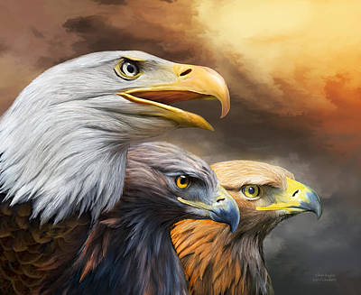 Raptor Art Mixed Media - Three Eagles by Carol Cavalaris