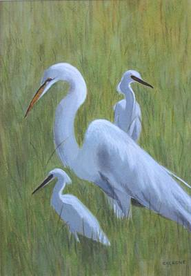 Three Egrets  Art Print