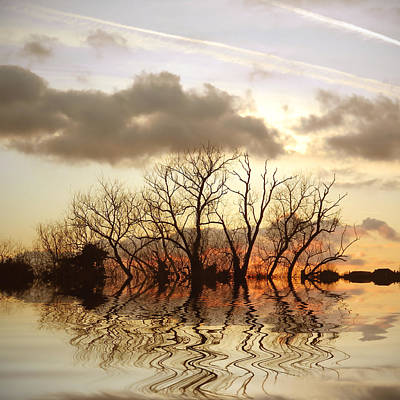 Bare Trees Digital Art - Three Elements by Sharon Lisa Clarke
