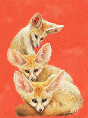 Digital Art - Three Fennec Foxes by Jane Schnetlage