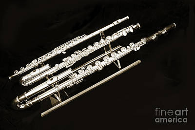 Photograph - Three Flute Music Instruments Photograph In Sepia  3440.01 by M K Miller