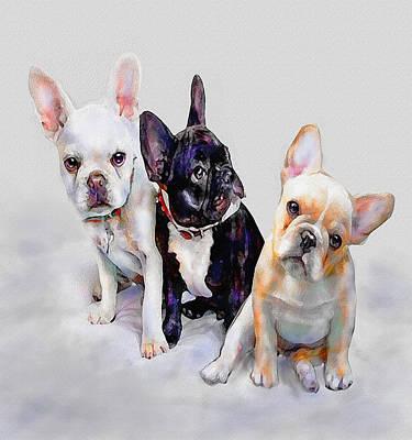 Puppy Digital Art - Three Frenchie Puppies by Jane Schnetlage