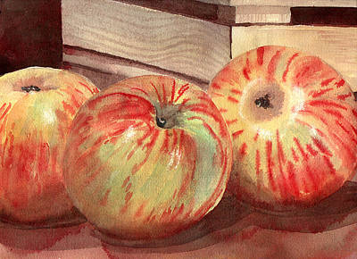 Apple Watercolor Painting - Three Fuji Apples Blenda Studio by Blenda Studio