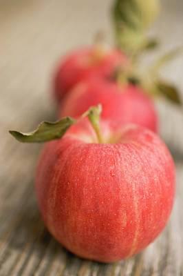 Three Gala Apples With Leaves Art Print