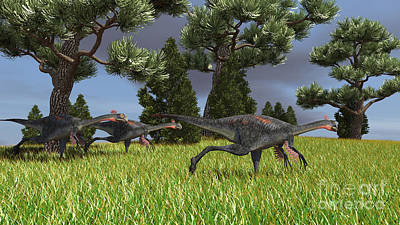 Three Gigantoraptors Running Art Print