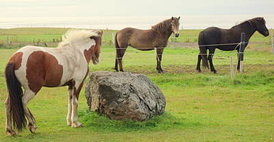Belong Dead Photograph - There Were Three Horsegirls And One Big Gray Stone  by Hilde Widerberg