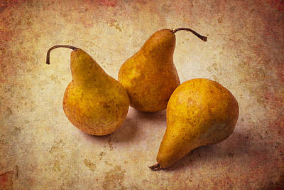 Pear Photograph - Three Golden Pears by Garry Gay
