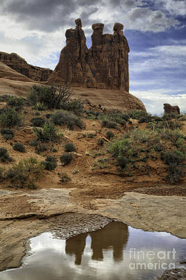 Photograph - Three Gossips Reflection by Stuart Gordon